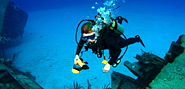top ten diving spots