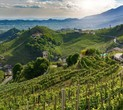 Italy's Prosecco Hills Declared a UNESCO World Heritage Site