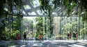 New Dubai Hotel Boasts its own Rainforest