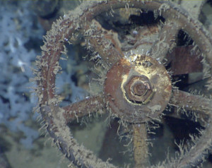 Paul Allen Discovers WWII Warship Musashi On Board Superyacht Octopus