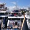 The Palm Beach Boat Show 2017 Round Up