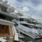 Project Insights and Italian Revelry (Photo: Superyachts.com at Versilia Yachting Rendevouz)