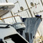 BWA Yachting Expands to Meet Demand in Monaco